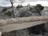 agate-bridge-im-petrified-forest-3
